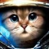 Геймершам на Twitch запретили соблазнять игроков - последнее сообщение от DJKOT
